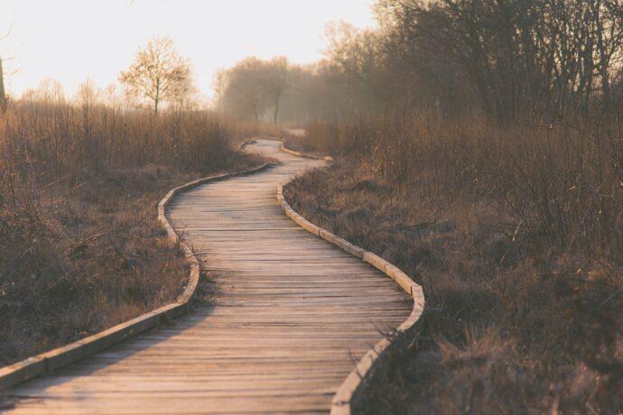 chemin - longue route - thèse - doctorat